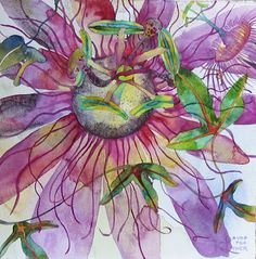 Passion fruit flower watercolour - like some underwater anemone!
