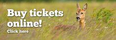 Buy Pensthorpe tickets online