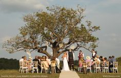 Small outdoor wedding