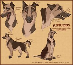 Sansone Character design Sheet by 1skylight1.deviantart.com on @DeviantArt