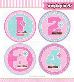 12 Month Stickers, Baby Girl Onesie stickers, Iron on Transfers - Monthly Milestones DIY Printable (No. 109) - Instant Download
