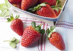 It's difficult to resist a perfectly ripe strawberry, but did you know just how good they are for you? Nutritionist Jo Lewin shares the nutrition benefits of the bright red berry.