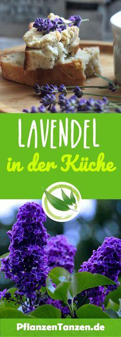 Lavendel riecht nicht nur lecker, sondern lässt sich auch wunderbar in der Küche verwenden    #Lavendel #Küche #lila #Strauch #Garten #Pflanzentanzen Kraut, Breakfast, Cluster, Food, Stress, Life, Ideas, Lavender Kitchen, Green Ideas