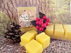 Holiday Beeswax Melts White Or Yellow Wax Clamshell Tray of 6 Melts Hand-Poured Flameless Candle Christmas Fragrance PureAndSimpleCandles