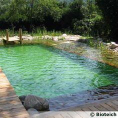 Really like this natural style pool.  Piscine naturelle privée