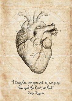 Anatomy Sketches, Anatomy Art, Drawing Sketches, Heart Anatomy Drawing, Heart Pencil Drawing, Heart Drawings, Drawing Ideas, Zelda Fitzgerald, Scott Fitzgerald