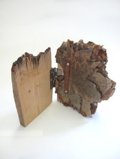 "curiositycontained: "" sarah-baird: "" artpropelled: "" leslieavonmiller: "" lesliemarsh: "" fuckyeahbookarts: "" readingroom2010: "" "" Lexi Hayman ""Wood Book Object"" (39) "" """