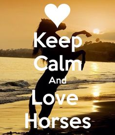 KEEP CALM AND LOVE HORSES. Another original poster design created with the Keep Calm-o-matic. Buy this design or create your own original Keep Calm design now. Cute Horses, Horse Love, Beautiful Horses, Funny Horses, Keep Calm Posters, Keep Calm Quotes, Inspirational Horse Quotes, Motivational Sayings, Baby Love Quotes