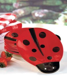 Ladybug Kitchen Collection