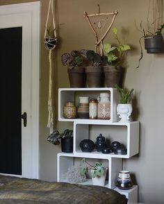 Bedroom scene 🌵🌱 . .. ... #bedroom #shelving #plants #westgermanpottery #mousesback #farrowandball @fermliving @evokethespirit #hangingpots #jungalowstyle #simplystyleyourspace #currentdesignsituation #currenthomeview #sodomino #finditstyleit #showmeyourboho #interiordesign #eclecticinterior #interiorstyling #interior4all #earthtones #ottawa