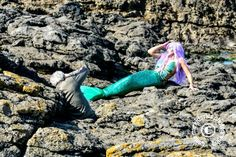 A rare mermaid sighting in Porthcawl