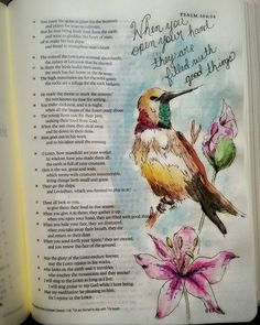 Bible Journal Psalm 104: 28  His hands are filled with good things. (I went a…