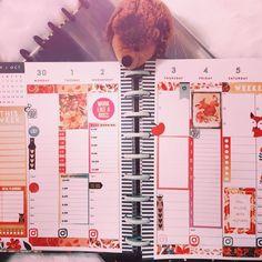 @lifestylebysaml posted to Instagram: [Planner] La décoration de la semaine de mon planner ☺ L'automne et ses  couleurs sont très inspirantes 🍂🍂 #planner #plannerlove #planning #planneraddict #plannercommunity  #plannerdecoration #plannergirl #plannerjunkie #planahappylife  #lifestylebysaml #lifestyleblogger #lifestyle #happylife #happybosslady  #happyboss #bossladyplanner #creative #plannerlayoutweekly  #plannerlayout #happylifestyle #happylife #happiness #planne Thursday Friday, Monday Tuesday, Planner Layout, Planning, Decoration, Layouts, Happiness, Lifestyle, Instagram