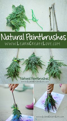 Make paint brushes from materials found on a nature walk. Fun art activity to go…