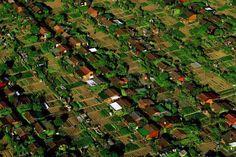 La ciudad donde cada habitante tiene su propio huerto urbano