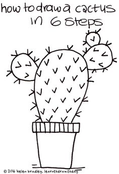 how to draw a cactus in 6 steps