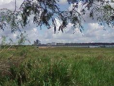 Fabrica de MDF, olha do pasto de minha égua Apaloosa no Sidilândia em 30/05/2013.