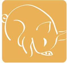 Get in-depth info on the Chinese Zodiac Pig personality & traits @ http://www.buildingbeautifulsouls.com/zodiac-signs/chinese-zodiac-signs-meanings/year-of-the-pig-boar/