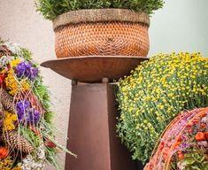 Planter Pots, Gardening, Fall Season, Autumn, Lawn And Garden, Horticulture