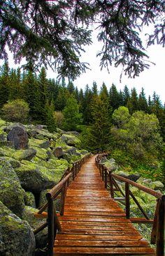 Bridge by Vencislav Stanchev on 500px Vitosha mountain. Bridge over the stone river.