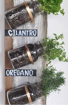 Go Green: 10 Little Eco-Friendly Projects | Eco-Friendly DIY: Mason Jar Herb Garden