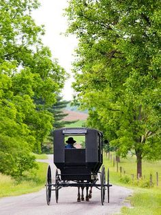 Amish Country: Before you go. . . . .  Our trip guide on the following slides contains suggestions on what to do, where to eat and where to stay in Amish Country.