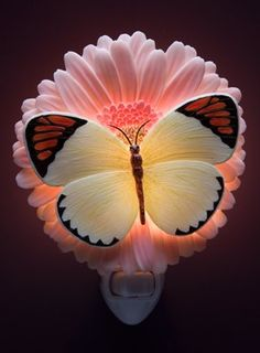 Orange Tip Butterfly & Gerber Daisy Night Light - Ibis and Orchid Design Collection - Amazon.com