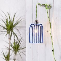 Brighten up your kitchen decor with this Blue Edison Cage Pendant Light Shade. It's easy to hang up, with its funky green long cord! For more information just head to our site Decor, Cool Lighting, Cage Pendant, Caged Lamp, Funky Lighting, Pendant Light Shades, Cage Pendant Light, Home Decor Lights, Funky Kitchen