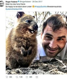 The #RogerFederer effect on tourism in #Perth due to this cute little guy #HappyQuokka