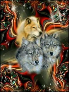 33 Ideas For Tattoo Animal Eyes Wolves Artwork Lobo, Wolf Artwork, Native American Wolf, Native American Artwork, Beautiful Wolves, Animals Beautiful, Cute Animals, Wolf Photos, Wolf Pictures