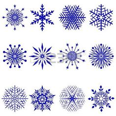 Set of 12 snowflakes. Vector  illustration. photo
