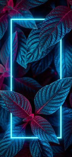 Whats Wallpaper, Neon Light Wallpaper, Iphone Wallpaper Photos, Flower Phone Wallpaper, Neon Wallpaper, Wallpaper Space, Graphic Wallpaper, Iphone Background Wallpaper, Cellphone Wallpaper