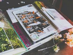 Seaweed Kisses: The Journal Diaries- Grace's Creative Journals