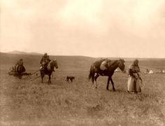 NATIVE AMERICAN LEGENDS Indian Horse Culture