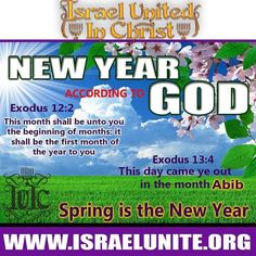 Is The New Year In The Winter? #newyears #newyear #truth #wakeup #bible #thursdaythoughts #abib #lit #nfl #nba