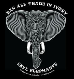 19a62d027 Ban All Trade In Ivory-Save Elephants T-shirt Women s