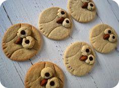 owl cookies1