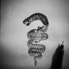 Just another night sketching #night #drawing #sketching #doodling #illustration #engraving #linework #dotwork #snake #skull #skeleton #ribs #teeth #apple #fruit #sin #devil #demon #tattoo #tshirt #design #wip #czech #art #black #ink #marker