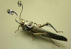 Steampunk grasshopper.