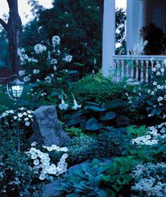 A moon garden, with light-colored and night-blooming flowers, a bench, and view of the moon.