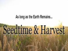 Image result for seedtime and harvest