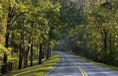 Natchez Trace Parkway...our way back.