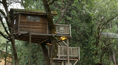 Treehouse the athlantic documentary
