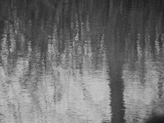 Water Ripples by ARW