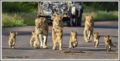 Çok güzel bir aile ♥♥♥ An adorable family