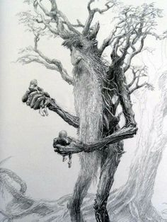 Treebeard by Alan Lee.I have The Two Towers book in hard cover with drawings by Alan Lee. Alan Lee, Hobbit Tolkien, O Hobbit, Lotr, Hobbit Art, Aragorn, Legolas, Gandalf, Fantasy Creatures