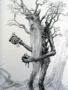 un protector del bosque