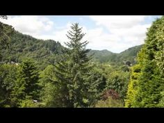 Luxury B&B & Self Catering | Betws-y-Coed | SnowdoniaTyn Y Fron