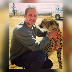 Paul Walker at The Lion Park in Johannesburg on August Cody Walker, Rip Paul Walker, Forest Lawn Memorial Park, Paul Walker Pictures, Fast And Furious, Handsome, The Incredibles, Heavens, Sweet Paul
