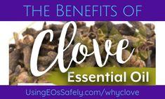 Benefits of Clove Essential Oil Cloves Benefits, Clove Essential Oil, Clove Oil, Young Living, Stress, Essentials, Eos, Hair Growth, Mini